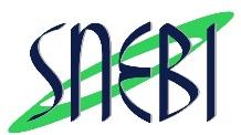 logo-snebi
